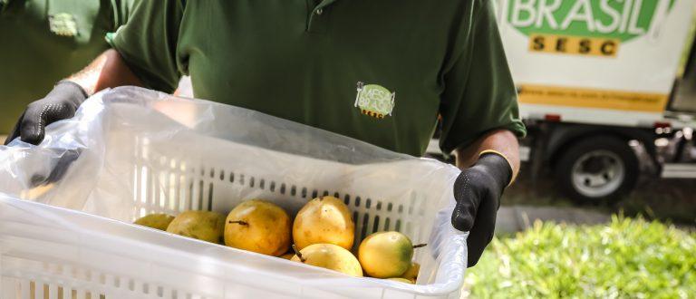Cachoeira do Sul: Mesa Brasil Sesc distribuiu mais de 105 toneladas de alimentos em 2018