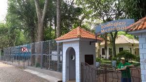 Decreto vai liberar visitação ao Zoo Municipal
