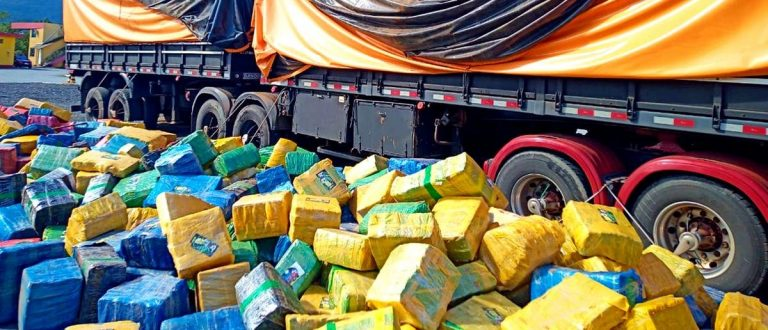 Carga de soja encobria 24,7 toneladas de maconha