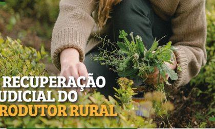 Cachoeirense é destaque em curso on-line de recuperação judicial para produtores rurais