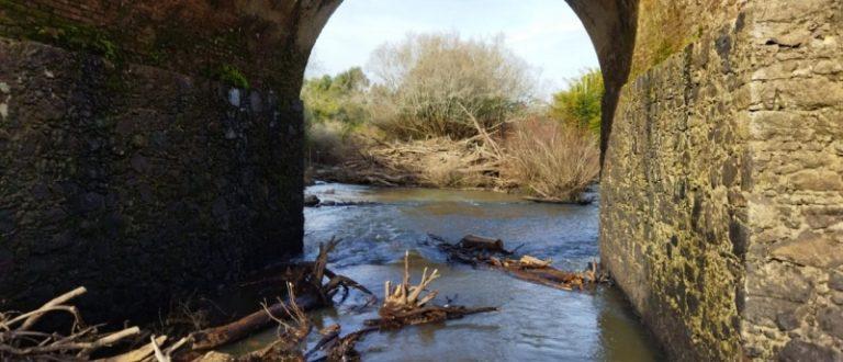 Ponte de Pedra: força-tarefa deve concluir limpeza até final de semana