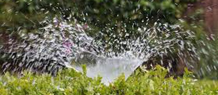 UFSM e Prefeitura firmam parceria para fortalecer agricultura irrigada
