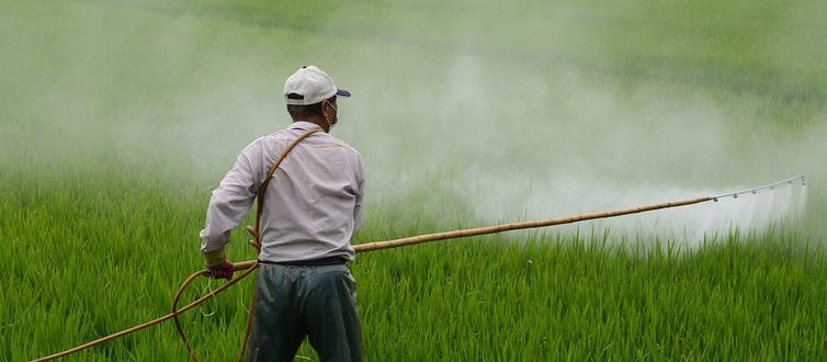Novas instruções normativas para agrotóxicos incluem Cachoeira do Sul