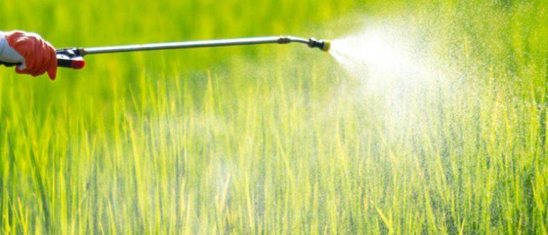 Regras que simplificam registro de defensivos agrícolas entram em vigor